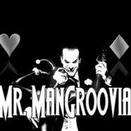 Mr Mangroovia