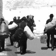 Domo Emigrantes